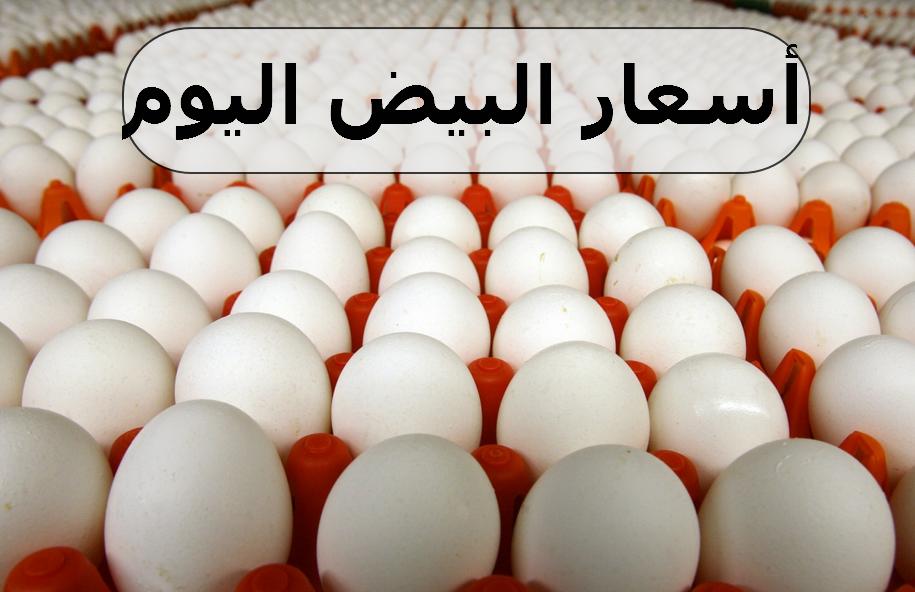 اسعار البيض اليوم الاثنين
