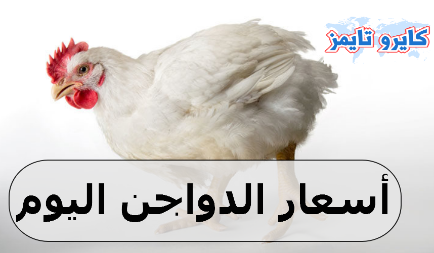 اسعار الفراخ البيضاء اليوم الاثنين