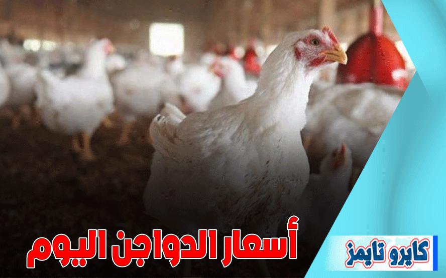 اسعار الفراخ البيضاء اليوم الجمعة 30-10-2020