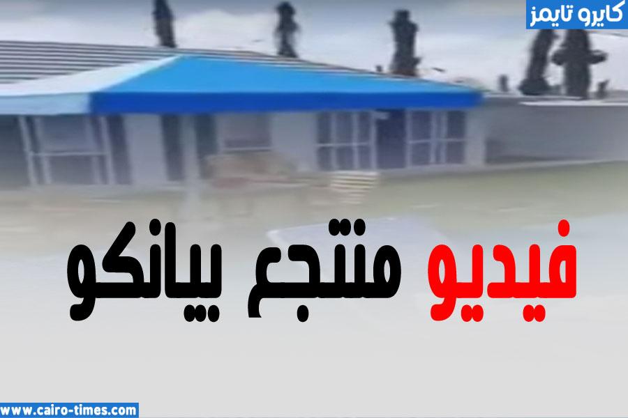 فيديو فضيحة منتجع بيانكو شمال غزة كامل